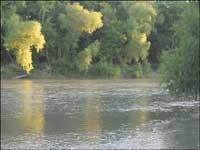 Colorado River, Bastrop, TX