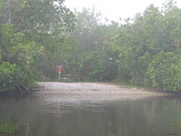 Darwin's Place