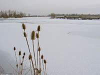 Arapaho Bend - February 2003