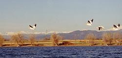 Boyd Lake