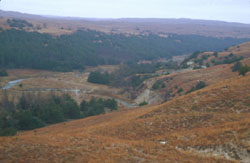 Dismal River - view from the hills