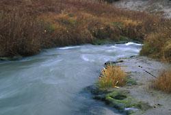 Dismal River - rapids