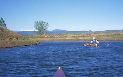 Douglas Lake -inlet bay
