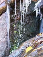 Crystal Reservoir