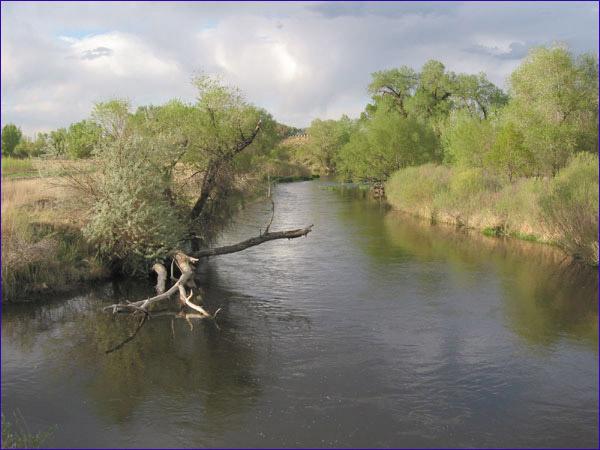 Poudre River - upstream of railroad bridge