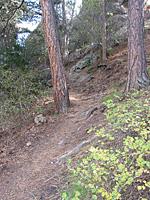 Soderberg Trail