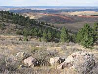 Stout Trail