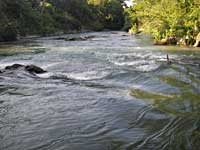 Old Mill Rapid - San Marcos River